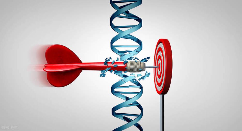 癌症治疗新科技:精准抗癌,干细胞疗法为肿瘤患者带来更多可能