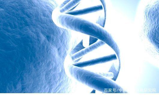 干细胞美容实现抗衰老,改善肌肤岁月问题