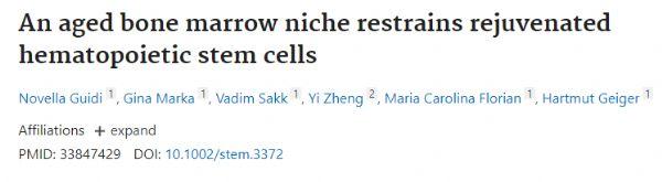 "Stem Cells:衰老生态位可使造血干细胞的""返老还童""?"