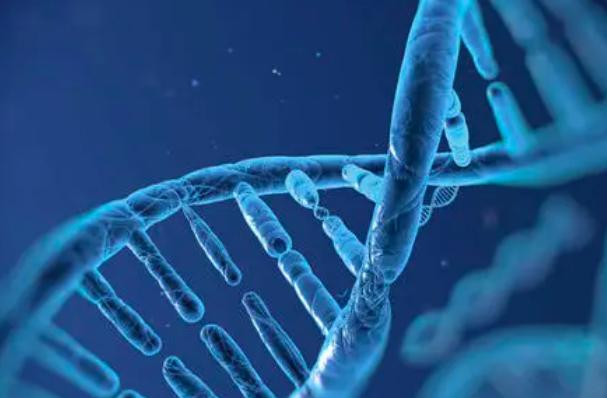 干细胞产业保持发展 有望给更多病人带来福音