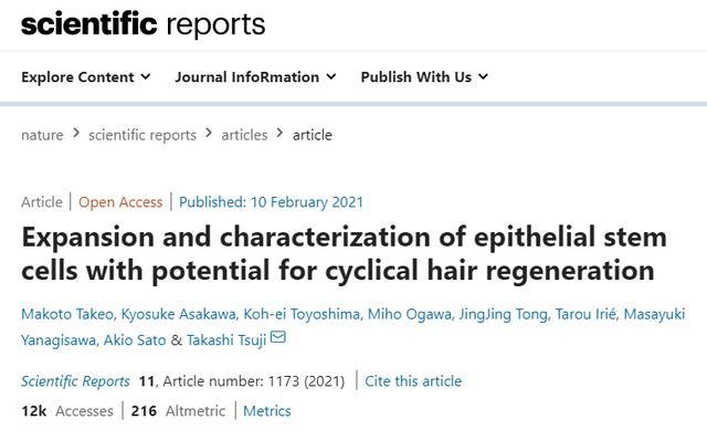 """你的""""头""""等大事有着落了,干细胞有望周期性再生毛囊!"""
