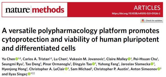 突破瓶颈!人源多能性干细胞培养技术新进展