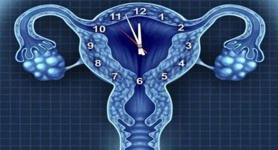 卵巢早衰的7大危害与干细胞的5重拯救!