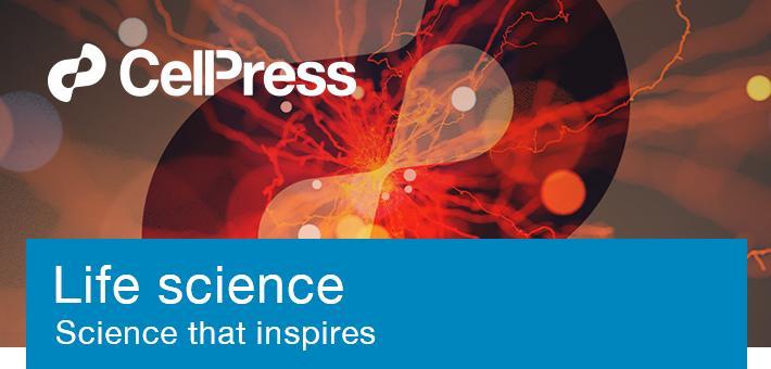 杜鹏团队首次实现全能干细胞捕获和培养