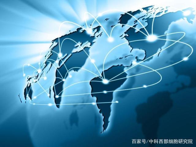 干细胞全球的格局发展