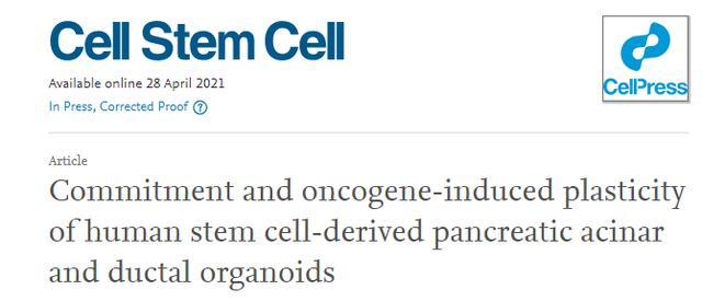 国家重点专项支持!用干细胞来制造和修复器官