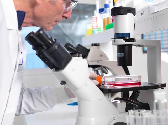 干细胞疗法在干燥综合征中的作用机制与应用前景
