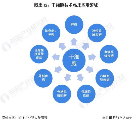 预见2021:《2021年干细胞医疗产业全景图谱》(附市场现状、竞争格局、发展前景等)