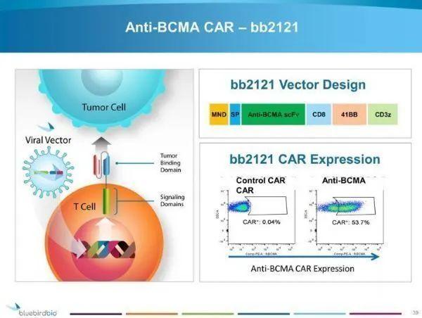 全球首个BCMA CAR-T疗法获欧盟CHMP推荐批准:治疗多发性骨髓瘤