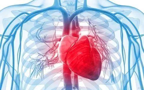 免疫细胞与健康的八大关系,你知道吗?