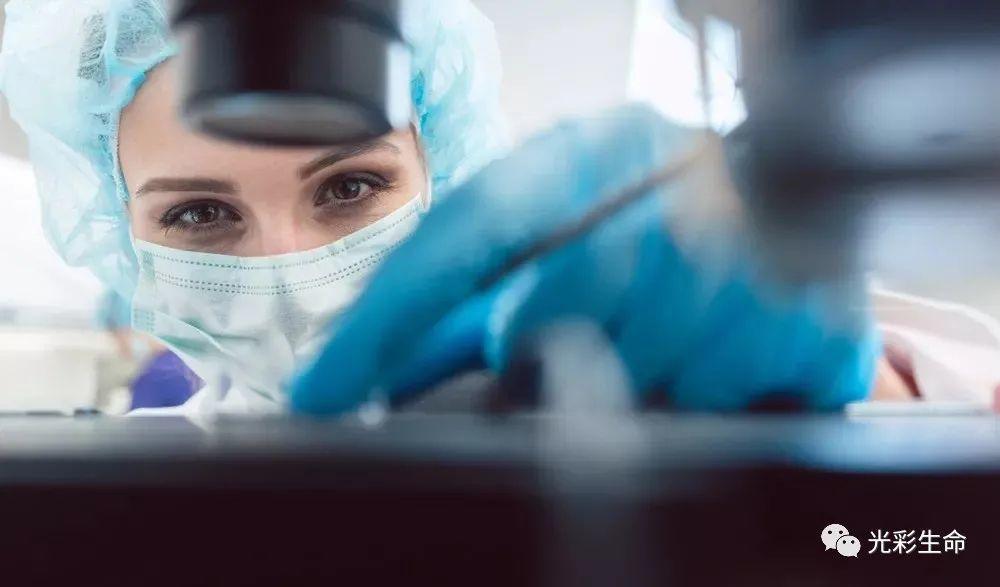 干细胞抗衰保健:一种新的健康生活方式