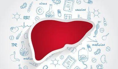 干细胞治疗肝脏疾病