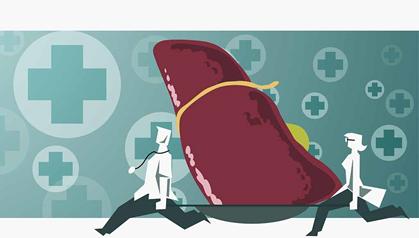 肝衰竭治疗的新策略——间充质干细胞移植