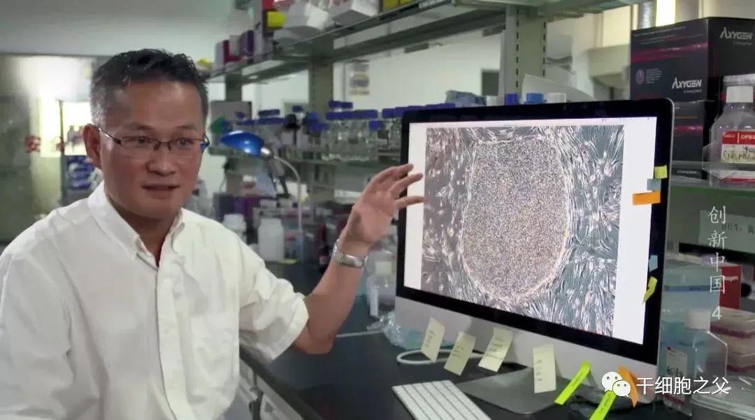 央视报道:干细胞疗法给难治性疾病带来治愈希望!