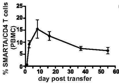 """你的免疫细胞也会""""精疲力尽"""",回输细胞是解决之道"""