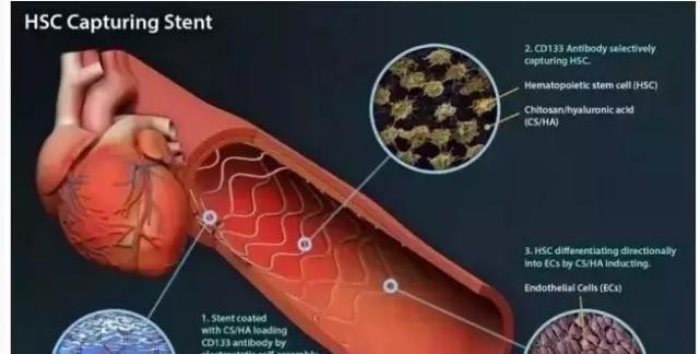 干细胞治疗领域及突破是你无法想象的强大