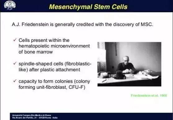 间充质干细胞的14个特性,你了解几个?