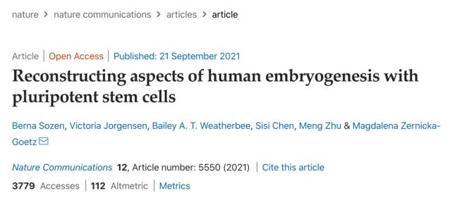 """利用干细胞制造出胚胎样结构!人类以后可以""""无性繁衍""""了?"""