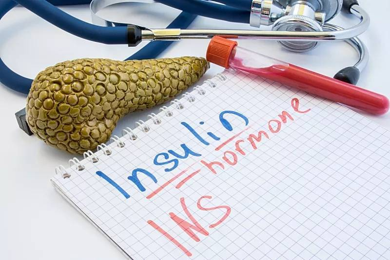 1型糖尿病发病机制及干细胞治疗机制的研究进展
